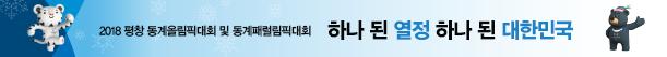 2018 평창 동계올림픽대회 및 동계패럴림픽대회 하나 된 열정 하나 된 대한민국